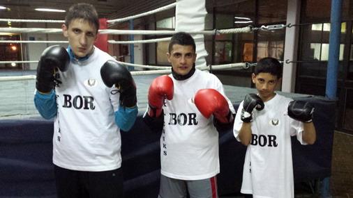 Borski bokseri pred Državno prvenstvo / foto: Live SPORT