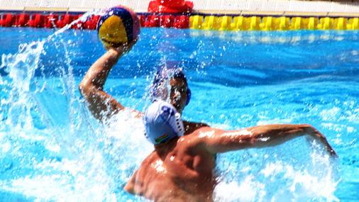 Srpski delfini u bazenu / foto: VSS